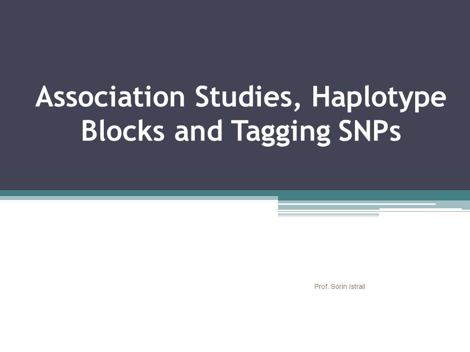 Association Studies, Haplotype Blocks and Tagging SNPs Prof. Sorin Istrail