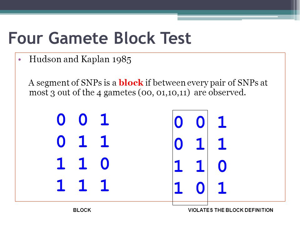 Four Gamete Block Test Hudson and Kaplan 1985 A segment of SNPs is a block if between every pair of SNPs at most 3 out of the 4 gametes (00, 01,10,11)