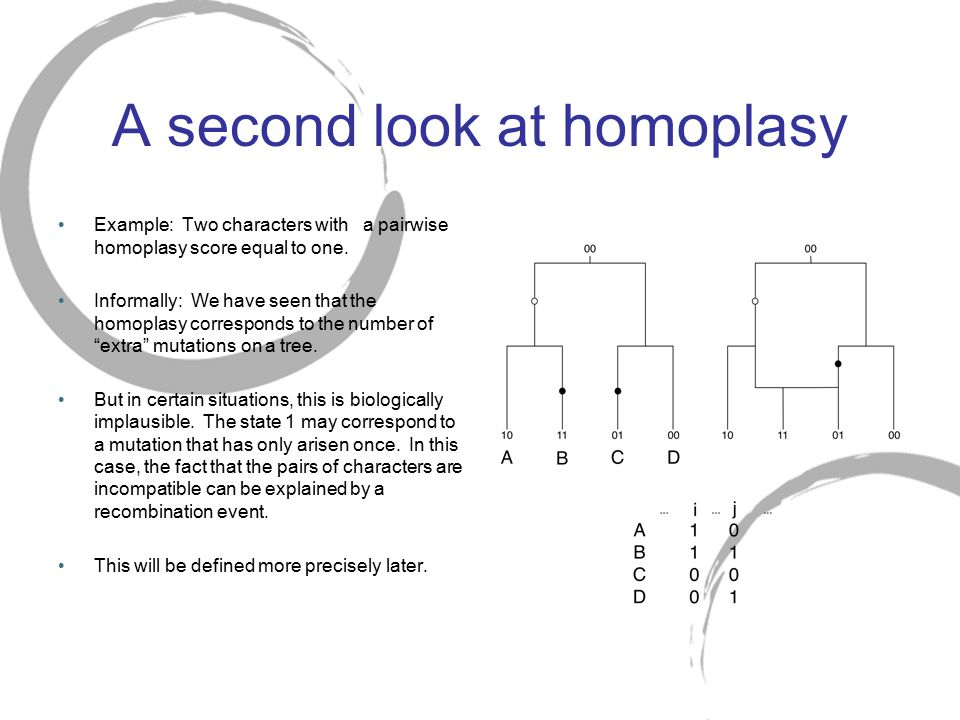 A second look at homoplasy Example: Two characters with a pairwise homoplasy score equal to one. Informally: We have seen that the homoplasy correspon