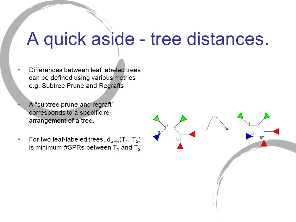 "A quick aside - tree distances. Differences between leaf labeled trees can be defined using various metrics - e.g. Subtree Prune and Regrafts A ""subtr"