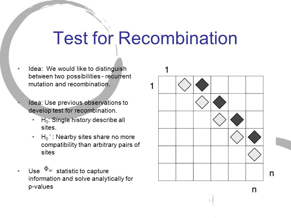 Test for Recombination Idea: We would like to distinguish between two possibilities - recurrent mutation and recombination. Idea: Use previous observa