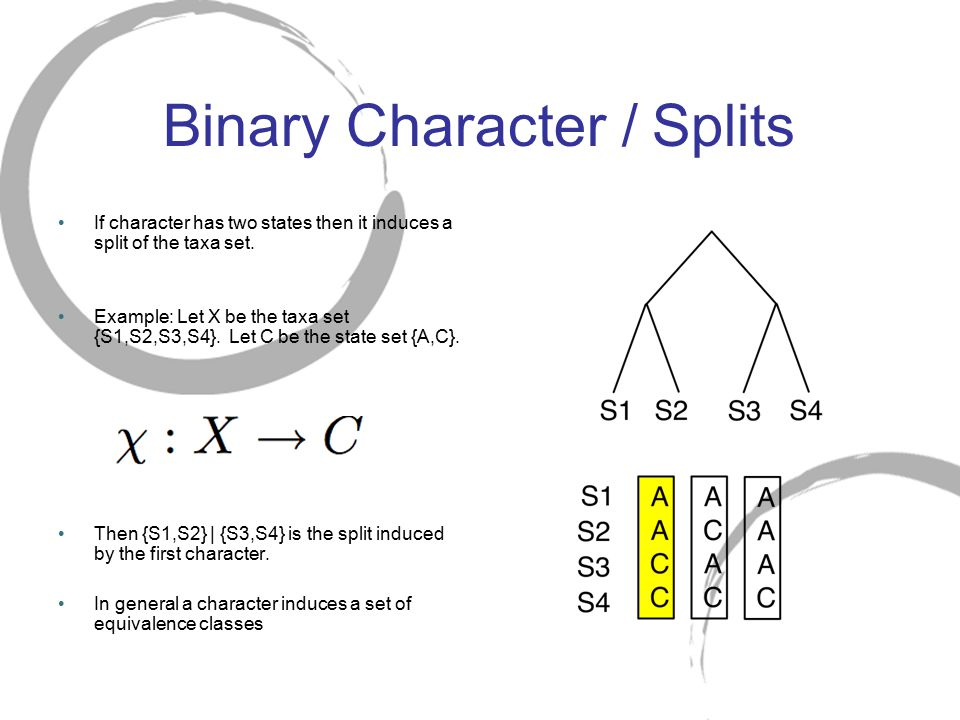 Binary Character / Splits If character has two states then it induces a split of the taxa set. Example: Let X be the taxa set {S1,S2,S3,S4}. Let C be