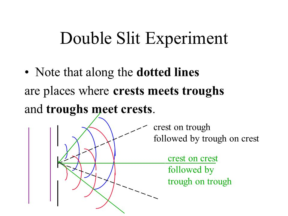 Double Slit Experiment Note that along the dotted lines are places where crests meets troughs and troughs meet crests. crest on crest followed by trou