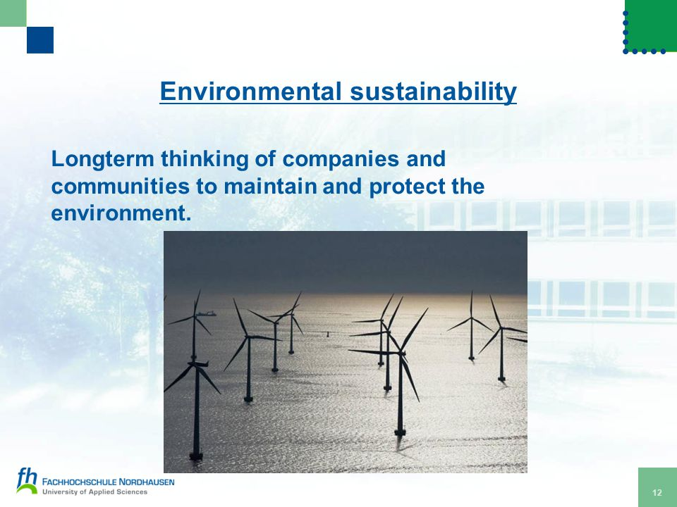 12 Environmental sustainability Longterm thinking of companies and communities to maintain and protect the environment.