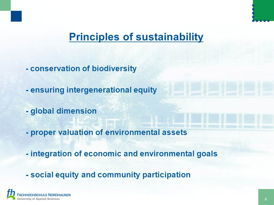 6 Principles of sustainability - conservation of biodiversity - ensuring intergenerational equity - global dimension - proper valuation of environmental assets - integration of economic and environmental goals - social equity and community participation