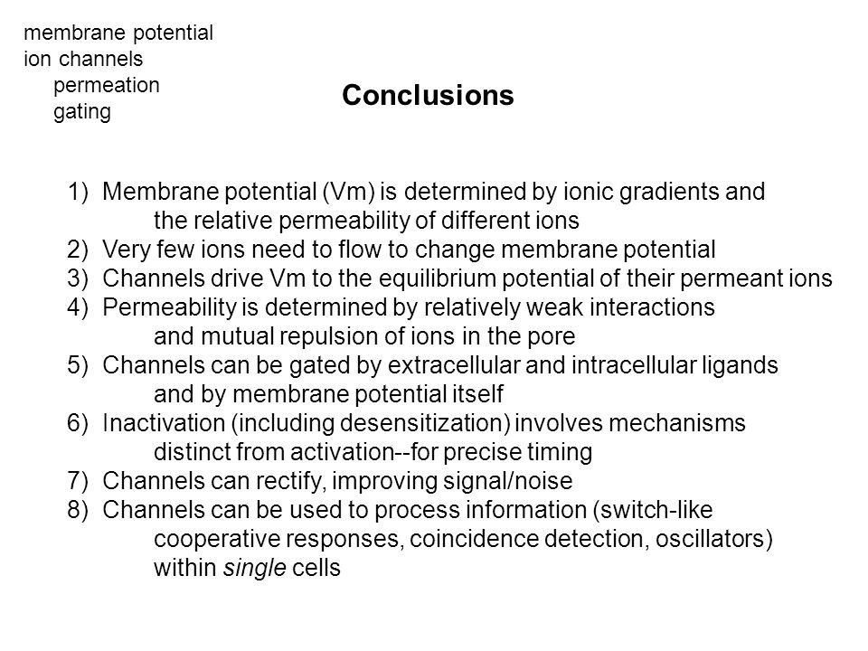 Conclusions membrane potential ion channels permeation gating 1) Membrane potential (Vm) is determined by ionic gradients and the relative permeabilit
