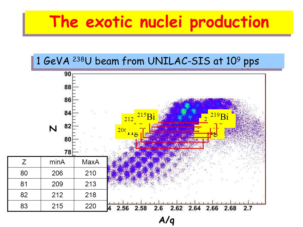 The exotic nuclei production 1 GeVA 238 U beam from UNILAC-SIS at 10 9 pps 206 Hg 210 Hg 209 Tl 213 Tl 212 Pb 218 Pb 215 Bi 219 Bi ZminAMaxA 80206210 81209213 82212218 83215220 A/q Z