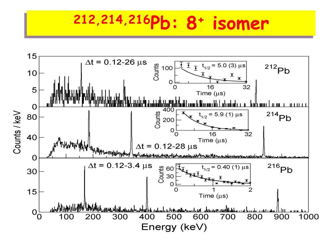 216 Pb : 8 + isomer Energy (keV) 217 Bi 6 + -> 4 + : 160 keV 2 + -> 0 + : 887 keV 4 + -> 2 + : 401 keV 197 keV 742 keV 490 keV 214 Pb T 1/2 = 0.40 (1) μs T 1/2 = 2.31 (6) μs