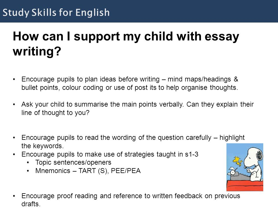 How can I support my child with essay writing.