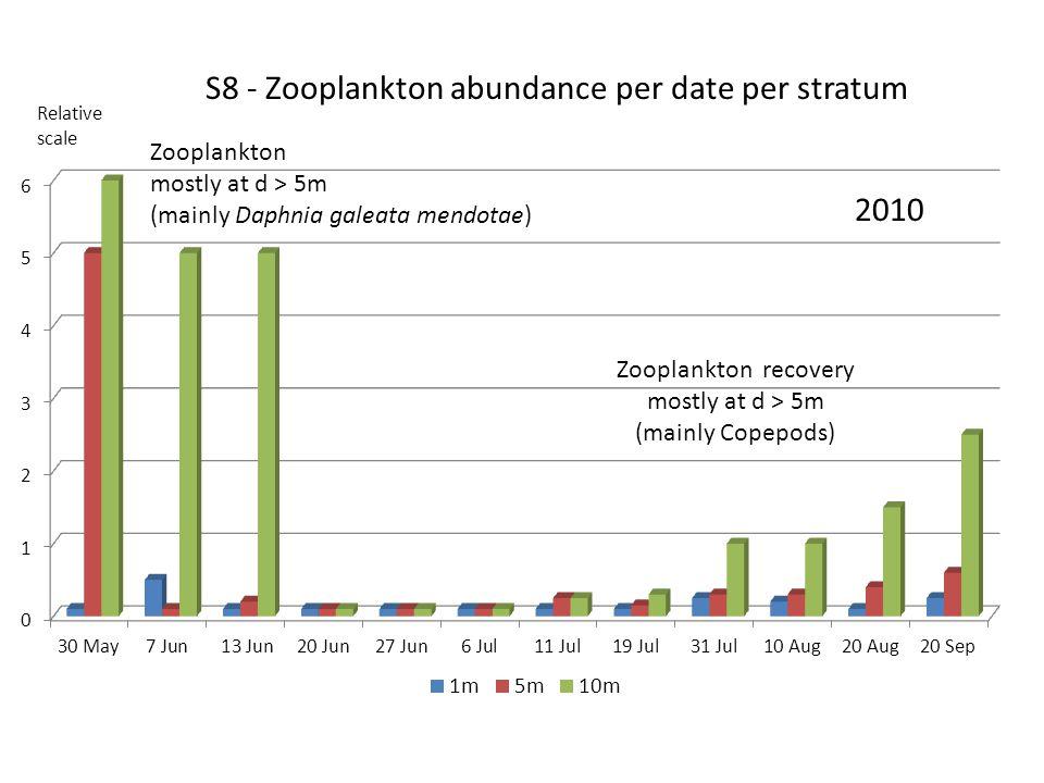 S8 - Zooplankton abundance per date per stratum 2010 Relative scale