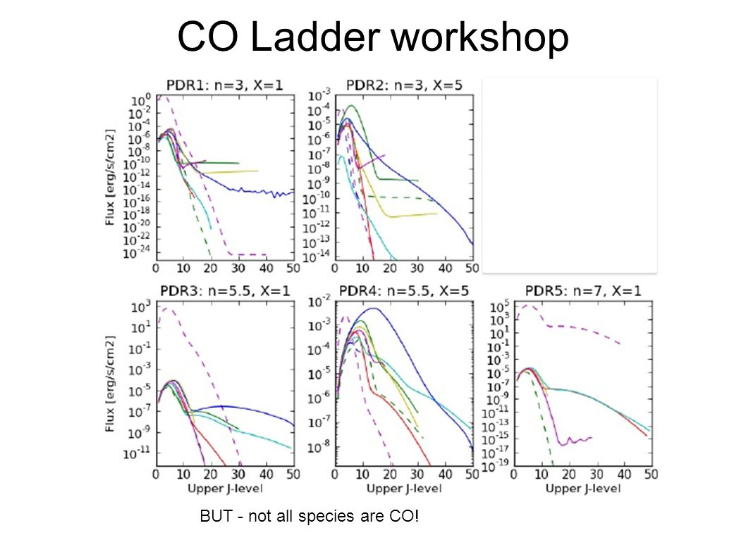 CO Ladder workshop BUT - not all species are CO!