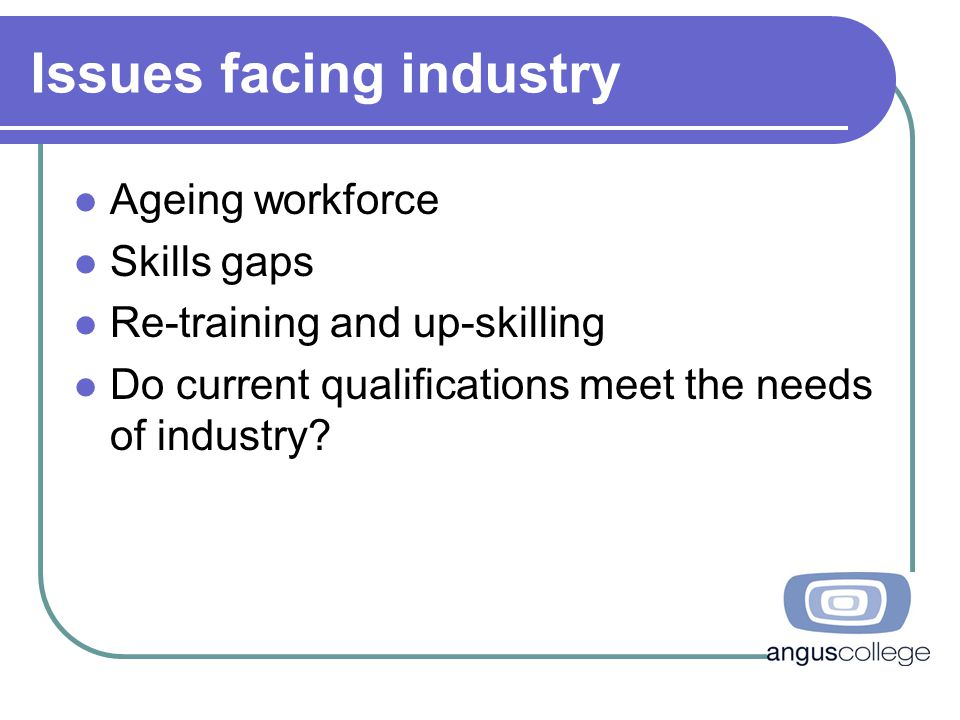 Issues facing industry Ageing workforce Skills gaps Re-training and up-skilling Do current qualifications meet the needs of industry?