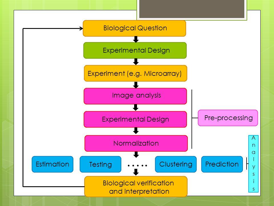 Biological Question Experiment (e.g.