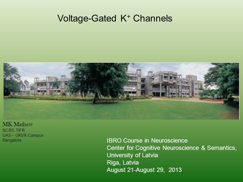 Voltage-Gated K + Channels MK Mathew NCBS, TIFR UAS – GKVK Campus Bangalore IBRO Course in Neuroscience Center for Cognitive Neuroscience & Semantics, University of Latvia Riga, Latvia August 21-August 29, 2013