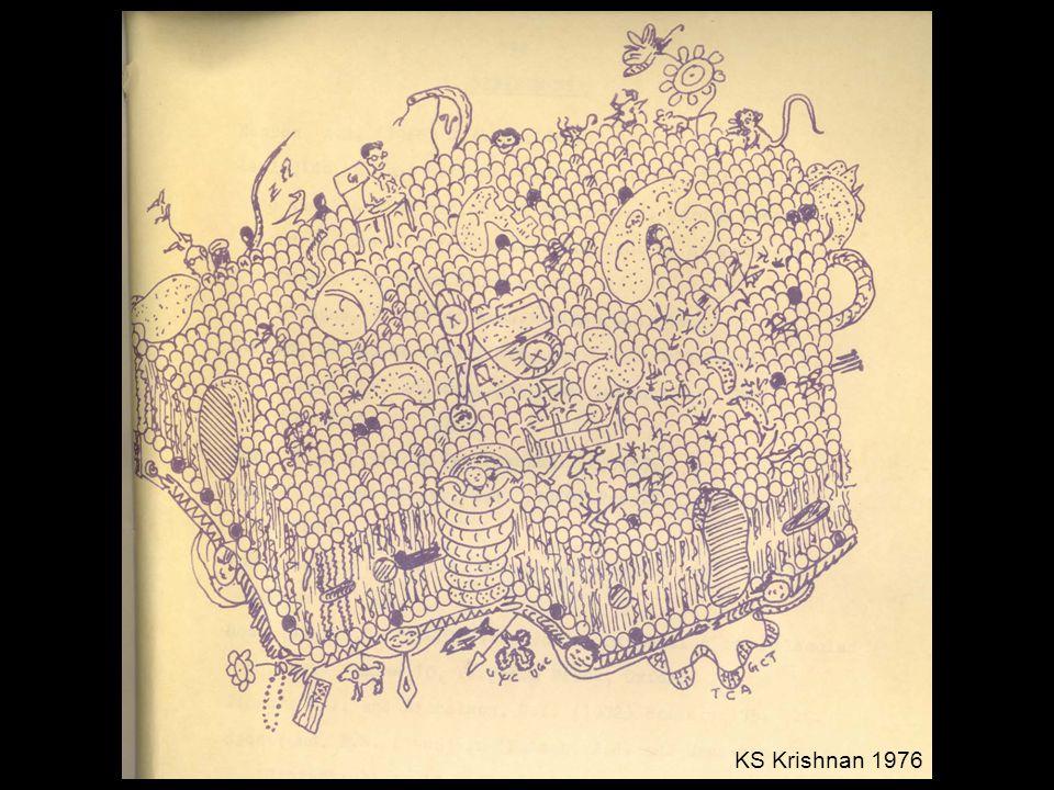 KS Krishnan 1976