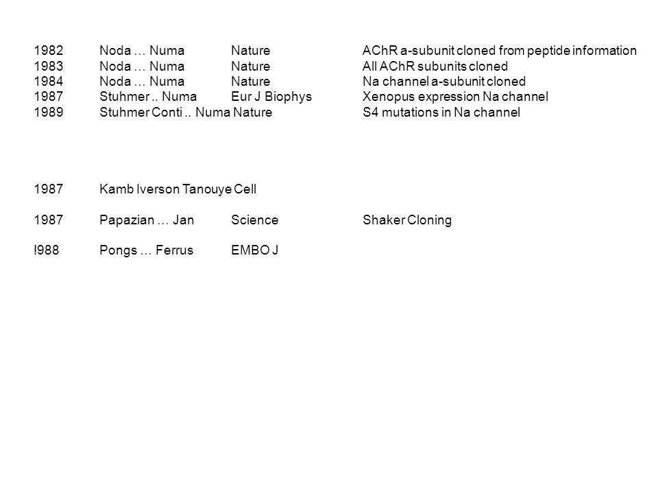 1982Noda … Numa NatureAChR a-subunit cloned from peptide information 1983Noda … Numa NatureAll AChR subunits cloned 1984Noda … Numa NatureNa channel a