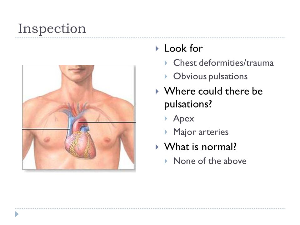 Inspection  Look for  Chest deformities/trauma  Obvious pulsations  Where could there be pulsations?  Apex  Major arteries  What is normal?  N