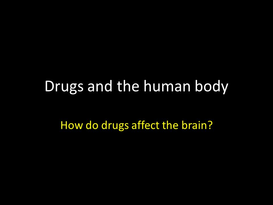 Drugs and the human body How do drugs affect the brain?