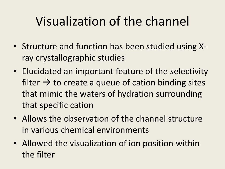 General Features of a VGIC SF = Selectivity Filter VS = Voltage Sensor OV = Outer Vestibule IV = Inner Vestibule Armstrong et al.