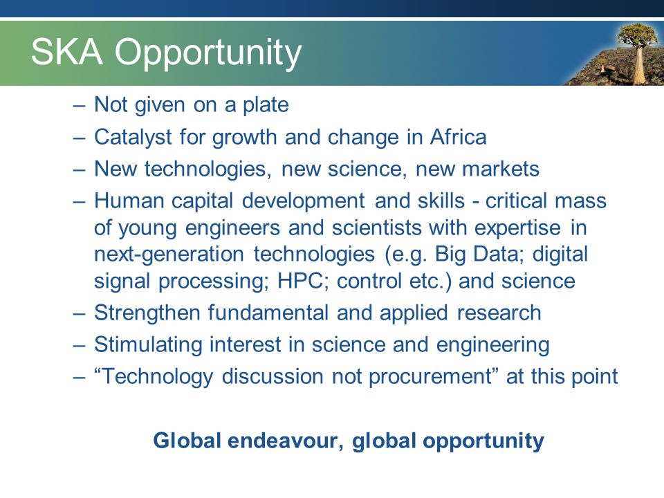 SKA Opportunity –Not given on a plate –Catalyst for growth and change in Africa –New technologies, new science, new markets –Human capital development