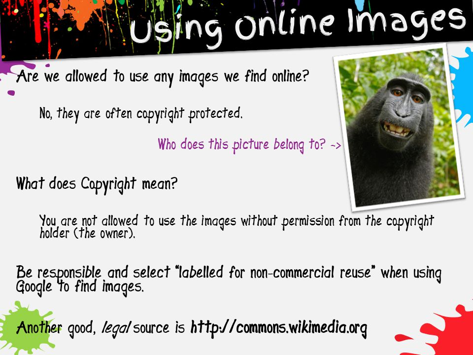 Are we allowed to use any images we find online? No, they are often copyright protected. Who does this picture belong to? -> What does Copyright mean?