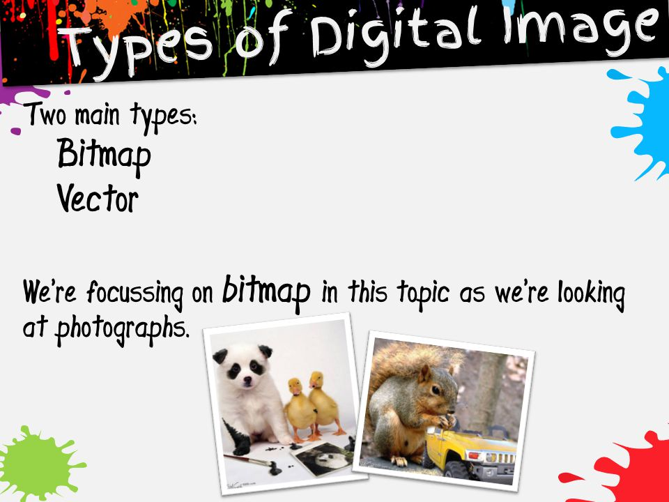 Types of Digital Image Two main types: Bitmap Vector We're focussing on bitmap in this topic as we're looking at photographs.