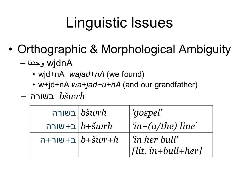 Linguistic Issues Orthographic & Morphological Ambiguity –وجدنا wjdnA wjd+nA wajad+nA (we found) w+jd+nA wa+jad~u+nA (and our grandfather) – בשורה bbšwrh בשורה bšwrh'gospel' ב + שורה b+šwrh'in+(a/the) line' ב + שור + ה b+šwr+h'in her bull' [lit.
