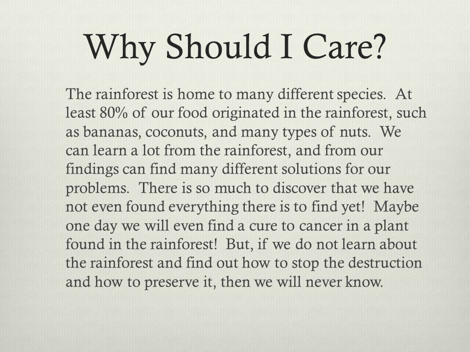 Why Should I Care. The rainforest is home to many different species.