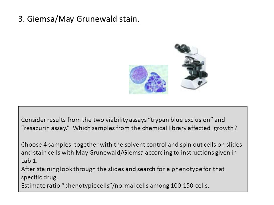 """Consider results from the two viability assays """"trypan blue exclusion"""" and """"resazurin assay."""" Which samples from the chemical library affected growth?"""