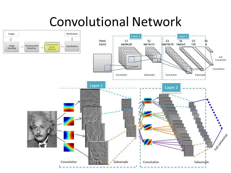 Convolutional Network w 11 w 12 w 13 w 21 w 22 w 23 w 31 w 32 w 33 Backpropagation gradient-descent procedure Backpropagationalgorithm for standard MLP