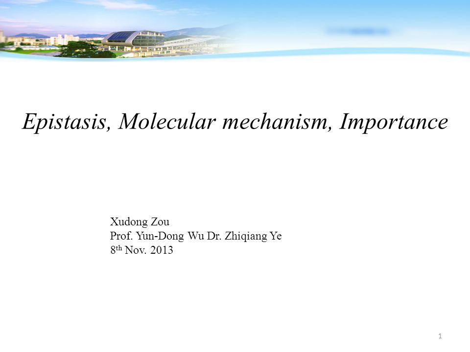 Epistasis, Molecular mechanism, Importance Xudong Zou Prof. Yun-Dong Wu Dr. Zhiqiang Ye 8 th Nov. 2013 1