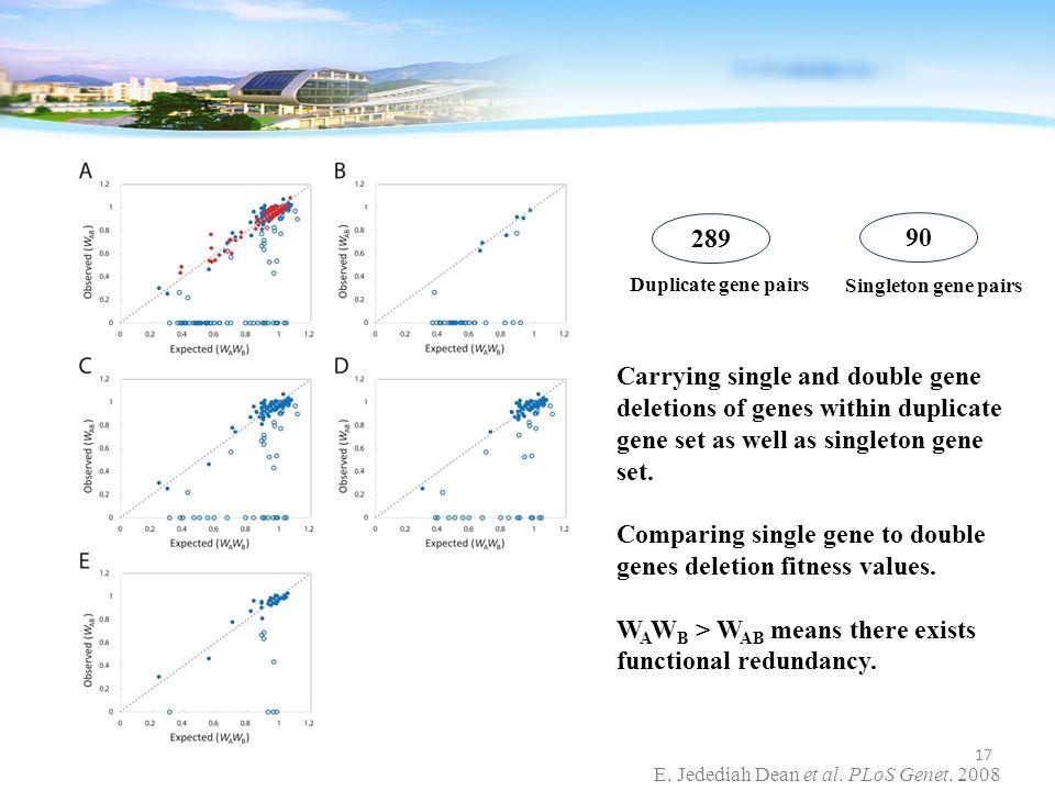 E. Jedediah Dean et al. PLoS Genet. 2008 Carrying single and double gene deletions of genes within duplicate gene set as well as singleton gene set. C