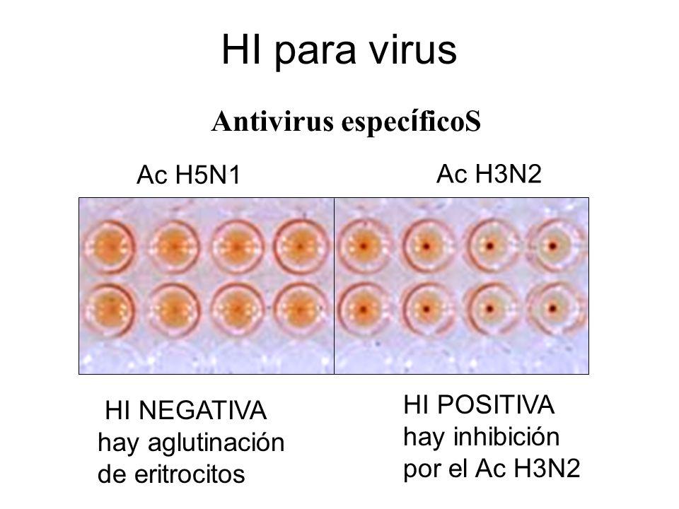 HI para virus Antivirus espec í ficoS Ac H5N1 Ac H3N2 HI NEGATIVA hay aglutinación de eritrocitos HI POSITIVA hay inhibición por el Ac H3N2
