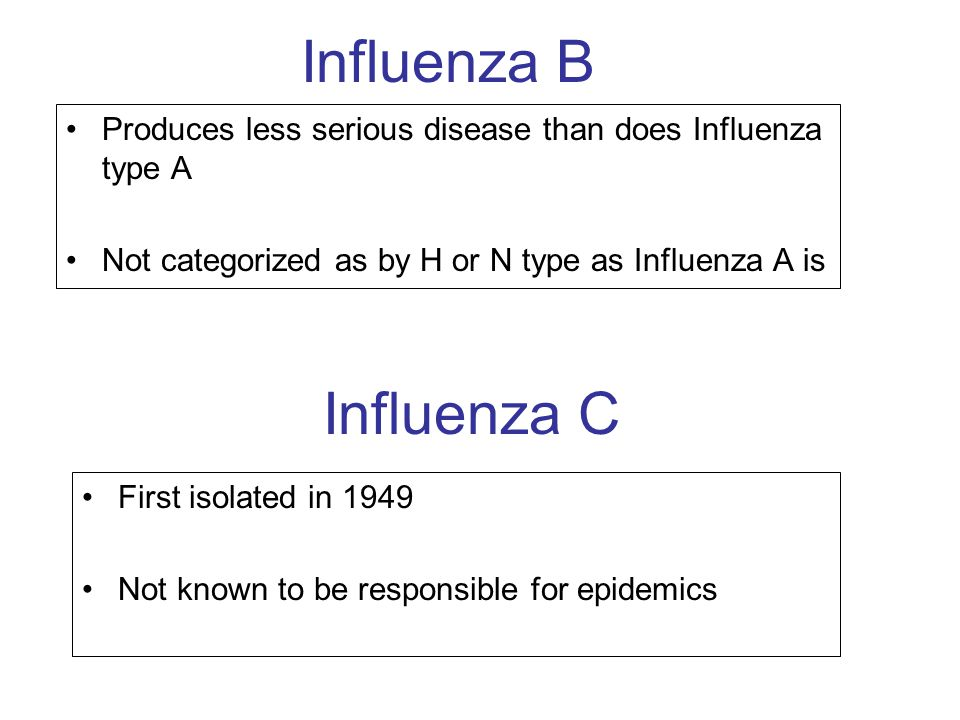 Influenza B Produces less serious disease than does Influenza type A Not categorized as by H or N type as Influenza A is First isolated in 1949 Not kn