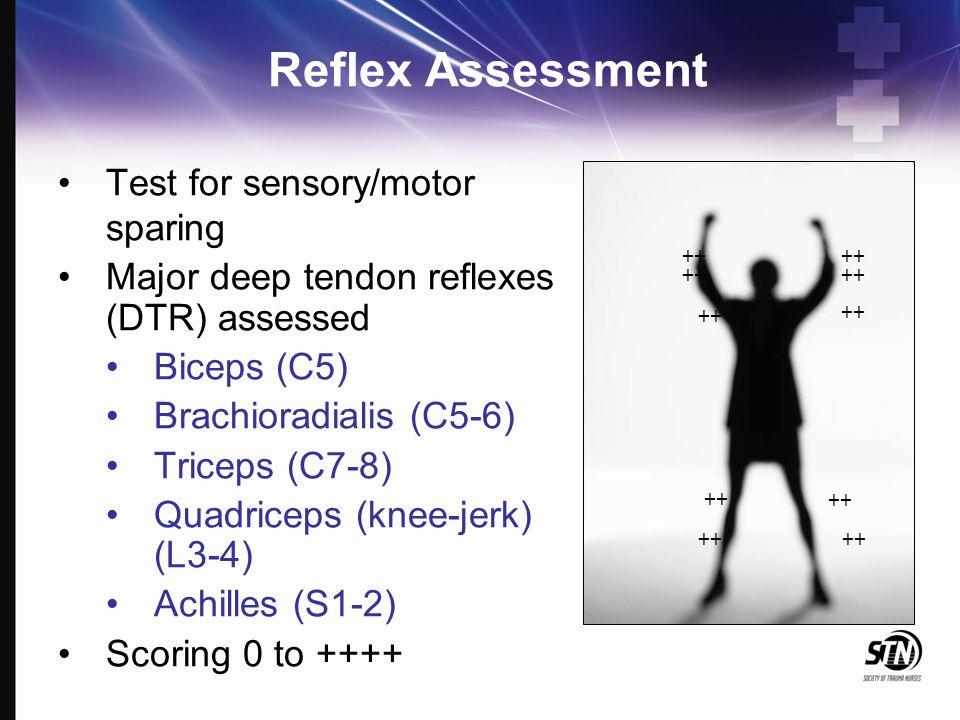 Reflex Assessment Test for sensory/motor sparing Major deep tendon reflexes (DTR) assessed Biceps (C5) Brachioradialis (C5-6) Triceps (C7-8) Quadricep