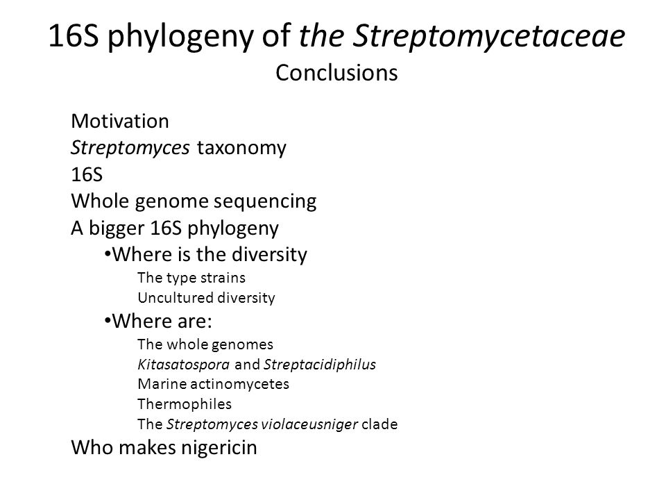Conclusions Motivation Streptomyces taxonomy 16S Whole genome sequencing A bigger 16S phylogeny Where is the diversity The type strains Uncultured diversity Where are: The whole genomes Kitasatospora and Streptacidiphilus Marine actinomycetes Thermophiles The Streptomyces violaceusniger clade Who makes nigericin