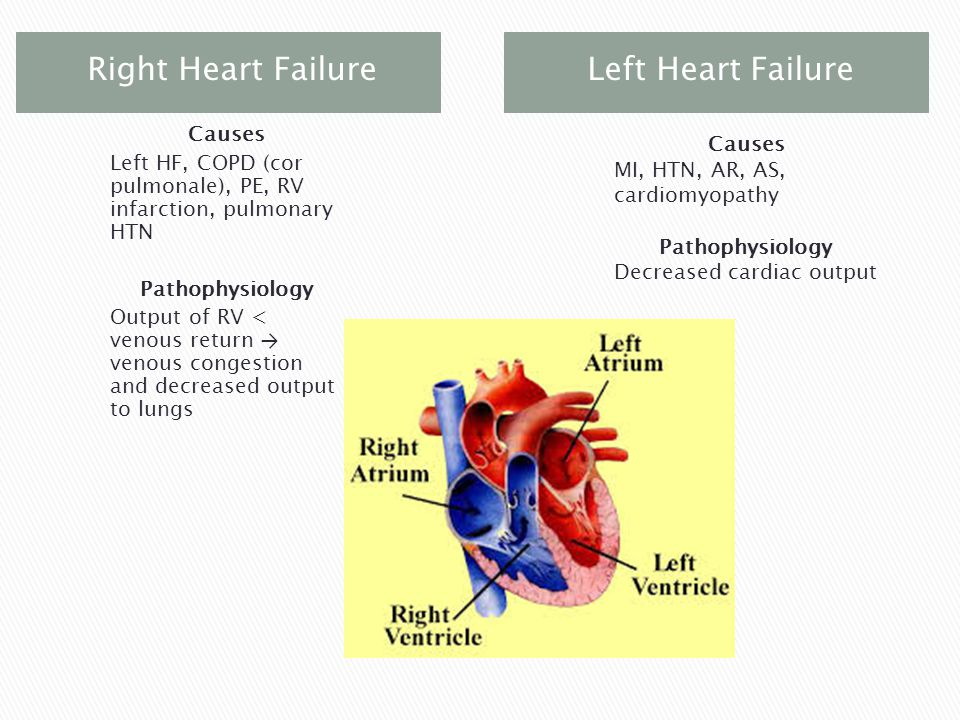  Cardiac ◦ Increased workload leads to increased O2 consumption and angina ◦ Decreased contractility leads to low output ◦ Tachycardia, dysrhythmias ◦ Low output leads to low BP and decreased tissue perfusion, lowered exercise tolerance ◦ Jugular vein distention, increased CVP, systemic edema