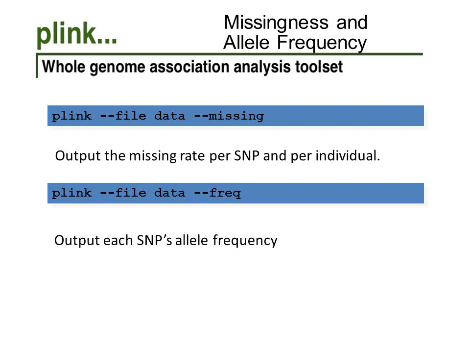 Missingness and Allele Frequency plink --file data --missing Output the missing rate per SNP and per individual. plink --file data --freq Output each