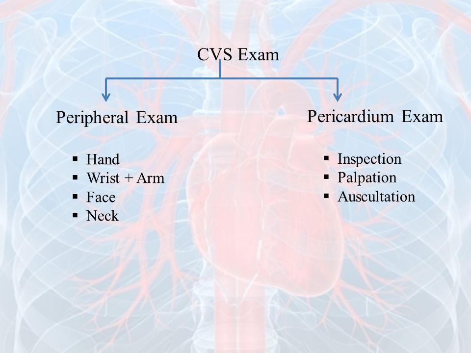Peripheral Exam Pericardium Exam  Hand  Wrist + Arm  Face  Neck  Inspection  Palpation  Auscultation CVS Exam