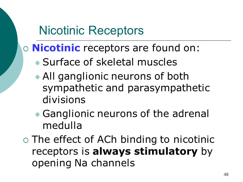 48 Nicotinic Receptors  Nicotinic receptors are found on: Surface of skeletal muscles All ganglionic neurons of both sympathetic and parasympathetic