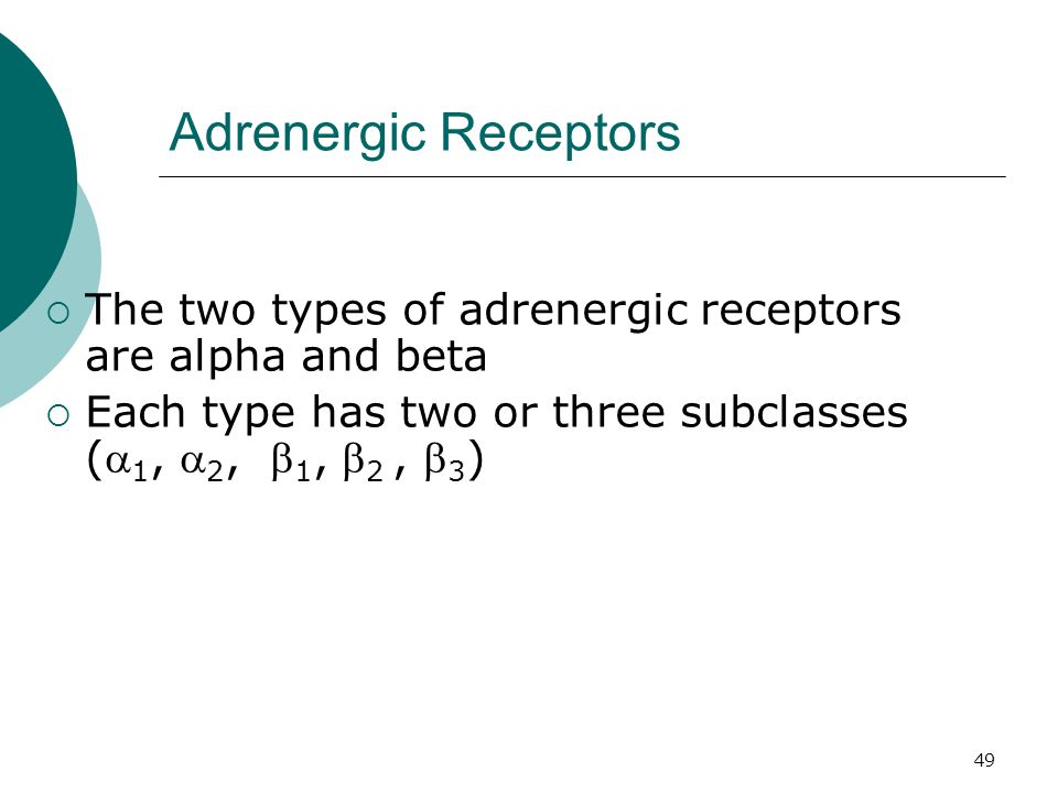 49 Adrenergic Receptors  The two types of adrenergic receptors are alpha and beta  Each type has two or three subclasses ( 1,  2,  1,  2,  3 )