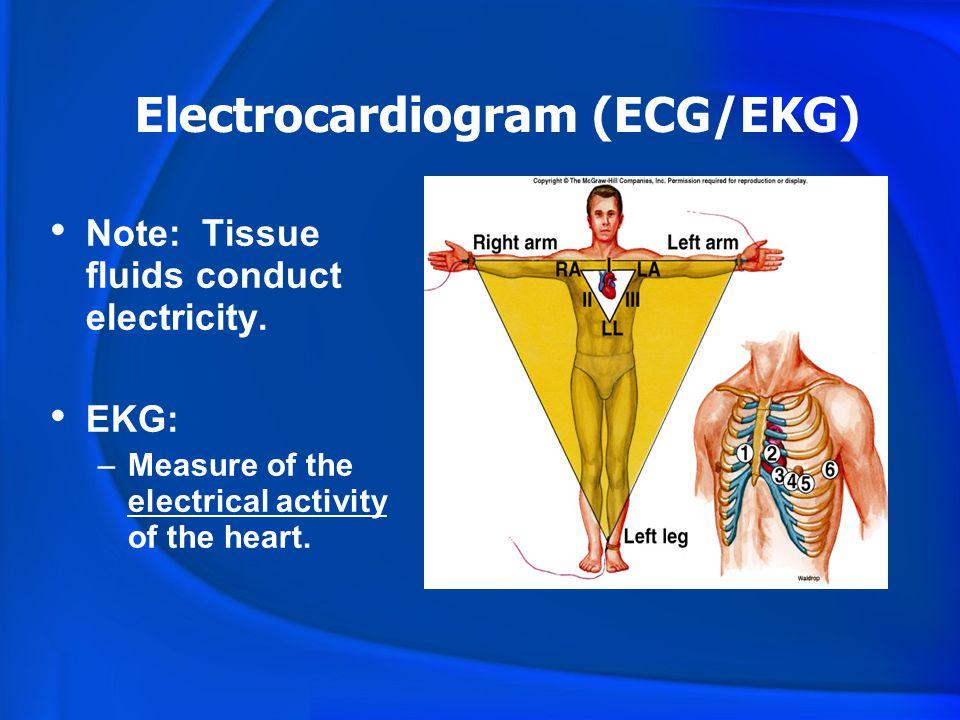 Cardiac PhysiologyElectrocardiography Diagnosis