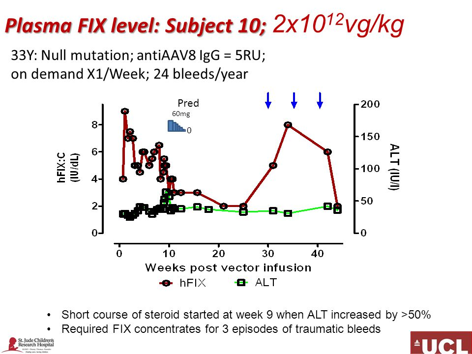 Plasma FIX level: Subject 10; Plasma FIX level: Subject 10; 2x10 12 vg/kg Short course of steroid started at week 9 when ALT increased by >50% Required FIX concentrates for 3 episodes of traumatic bleeds 33Y: Null mutation; antiAAV8 IgG = 5RU; on demand X1/Week; 24 bleeds/year 60mg 0 Pred