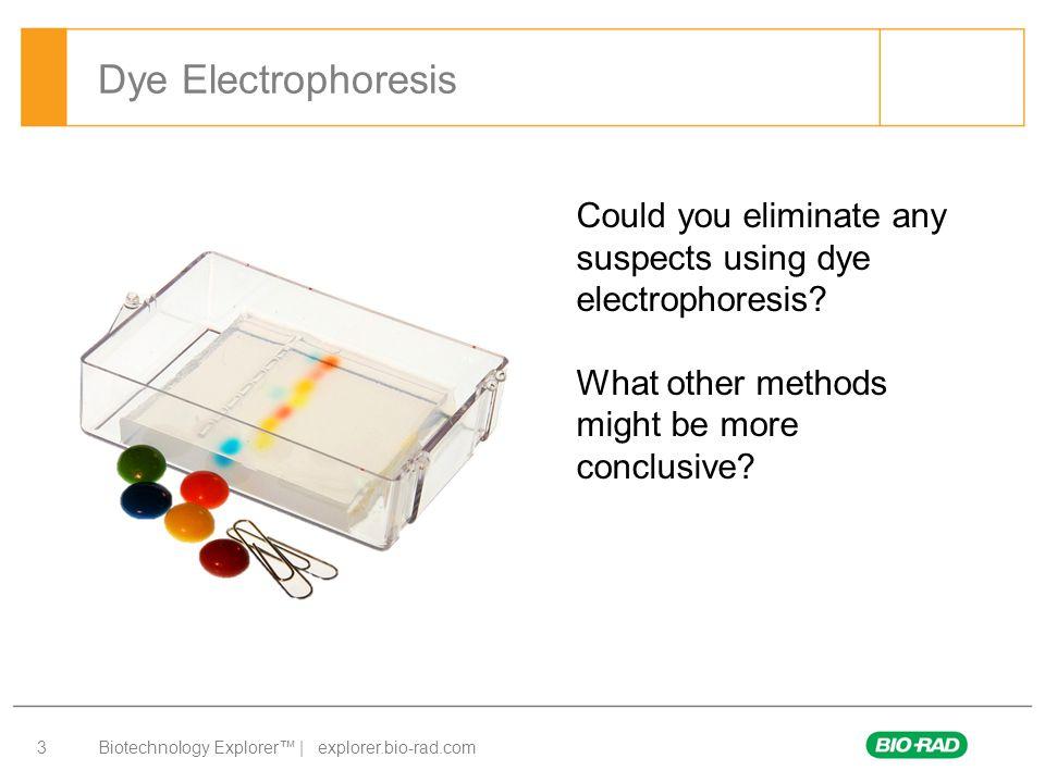 Biotechnology Explorer™ | explorer.bio-rad.com 24 Gel Electrophoresis 1.Collect your DNA samples from the water bath.