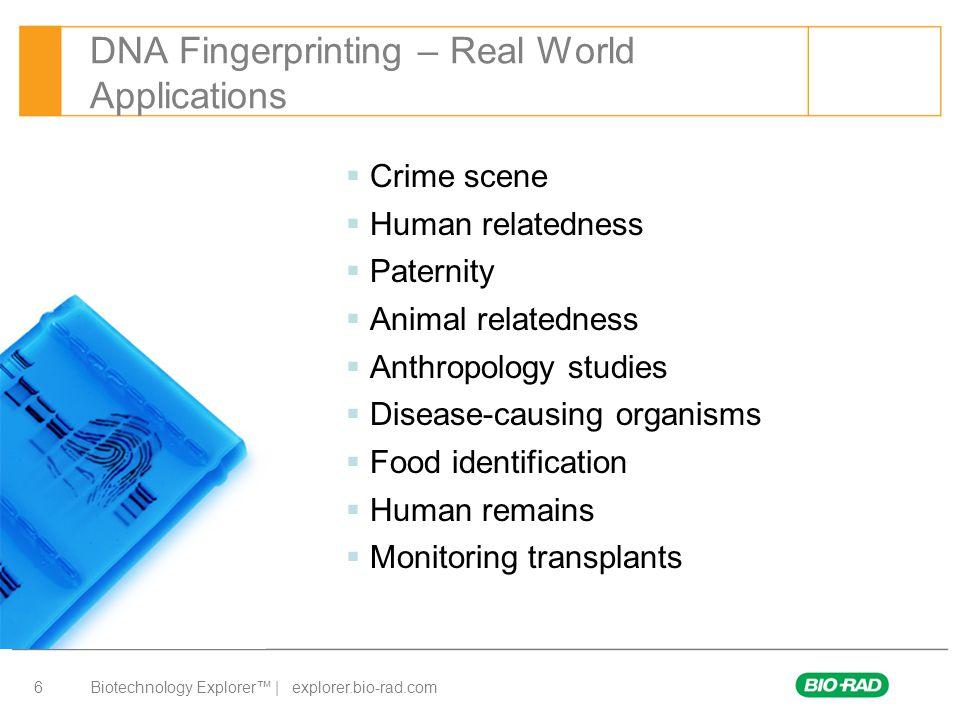 Biotechnology Explorer™ | explorer.bio-rad.com 7 DNA Fingerprinting Lab – Day 1