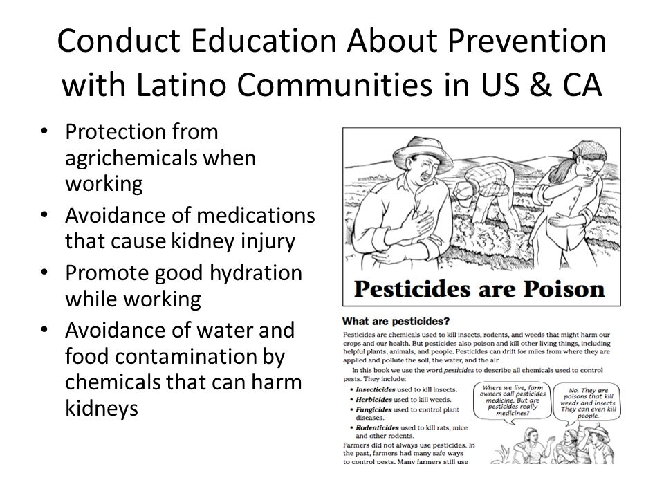 Conduct Education About Prevention with Latino Communities in US & CA Protection from agrichemicals when working Avoidance of medications that cause k