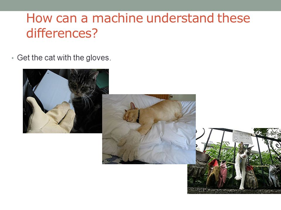 How can a machine understand these differences Get the cat with the gloves.