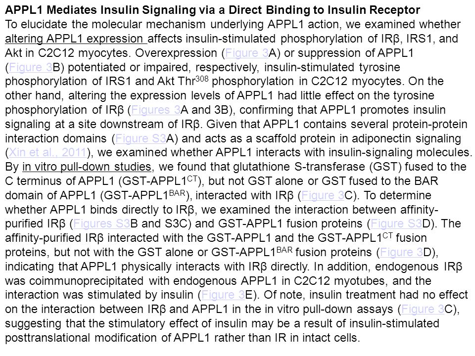 APPL1 Mediates Insulin Signaling via a Direct Binding to Insulin Receptor To elucidate the molecular mechanism underlying APPL1 action, we examined whether altering APPL1 expression affects insulin-stimulated phosphorylation of IRβ, IRS1, and Akt in C2C12 myocytes.