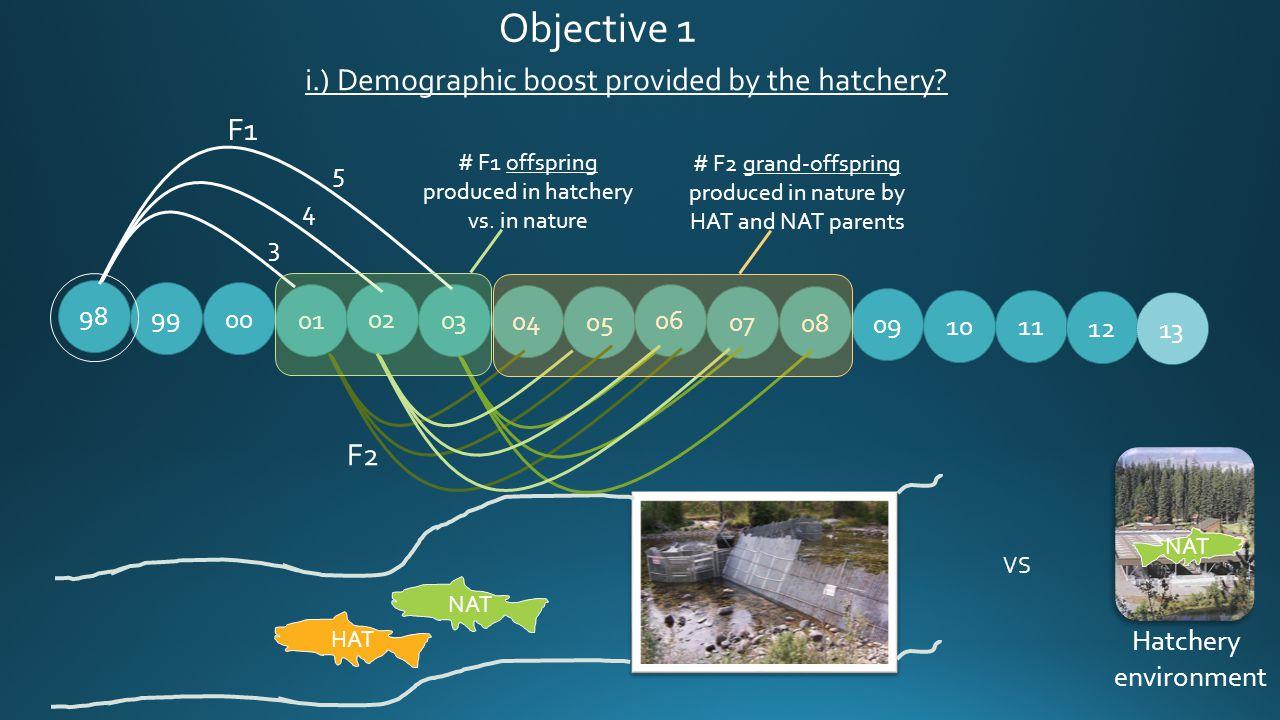 99 01 02 03 04 05 06 07 08 09 10 98 00 NAT 11 12 13 F2 NAT Hatchery environment VS i.) Demographic boost provided by the hatchery? Objective 1 3 4 5 F
