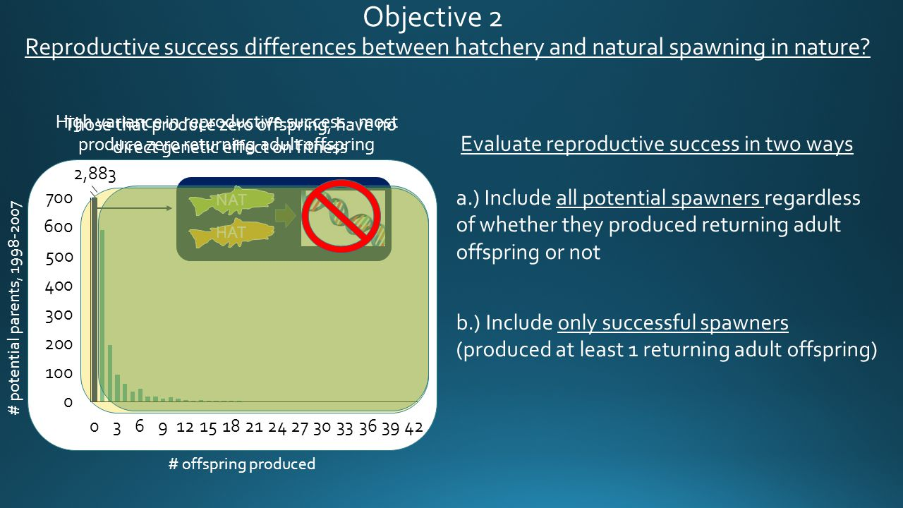 # offspring produced 2,883 # potential parents, 1998-2007 Those that produce zero offspring, have no direct genetic effect on fitness Objective 2 Repr